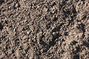 Soils and Potting Mix