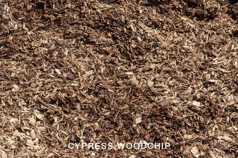 Cypress Woodchip