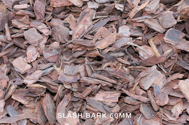 Slash Bark 50mm