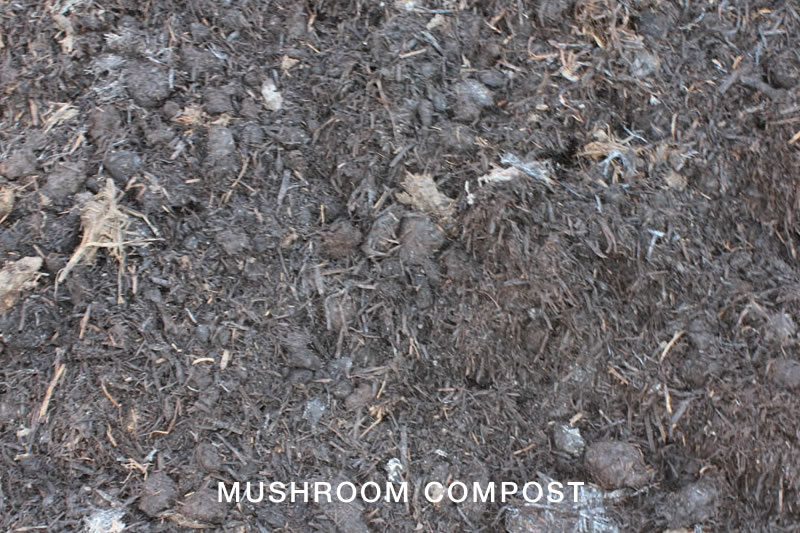Compost toowoomba soil improvers earthlife garden mate for Soil improver